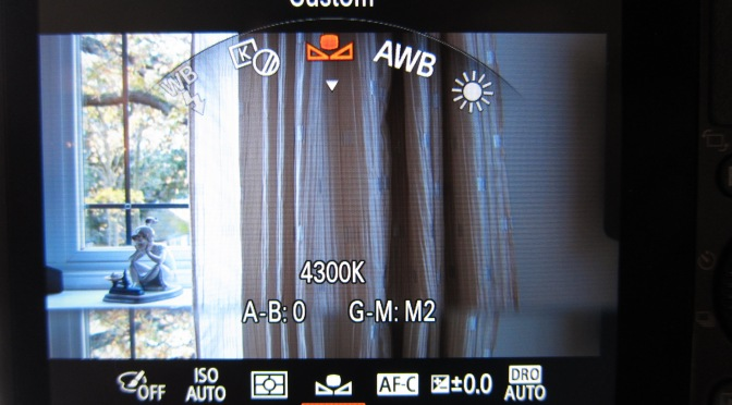 Sony RX100 – Tips for UW Video Part 3 Setting Custom White Balance