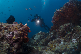 Sony RX100 – Tips for underwater video part 9 Wide Angle Shots and Lenses
