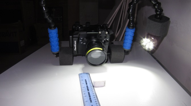 Tips for Underwater Video – Tripods and Monopods