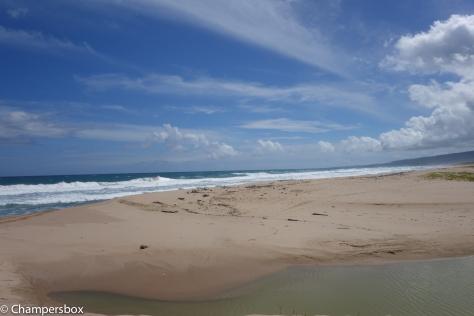 RX100 Beach Landscape