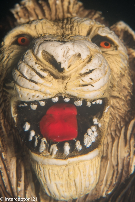 Lion Mouth Single Diopter