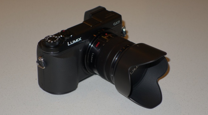 Panasonic GX7 with 14-42 Kit Lens with deepshot zoom gear in macro port 35