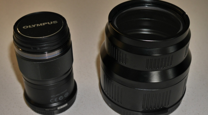 which macro lens to pick for your gh5 or micro four third