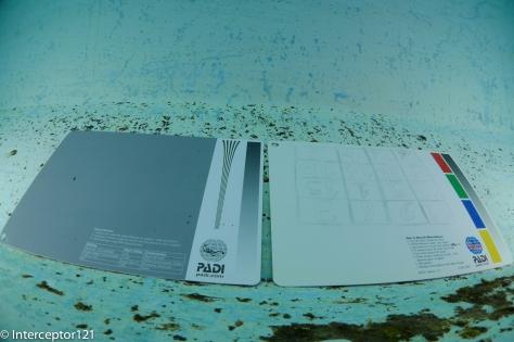 UWL-H100 Test Card