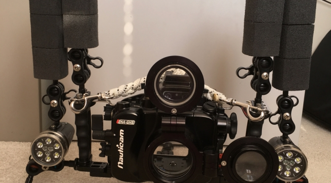 Macro video with the Panasonic gh5