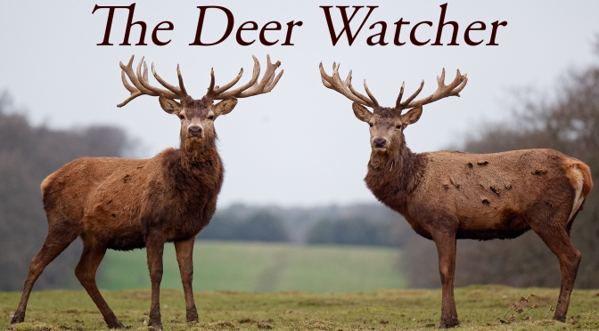 WATCH The Deer Watcher Premiere Friday 26 March 8PM GMT