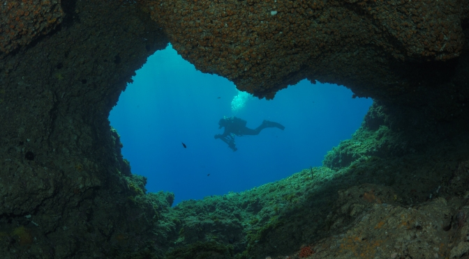 Back in the water Sorrento Peninsula 2021